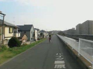 Promenade au bord du canal au Japon