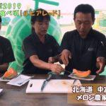 2019最後の赤肉メロン『ルピアレッド』を食レポ!:北海道 富良野 メロン農家の寺坂農園