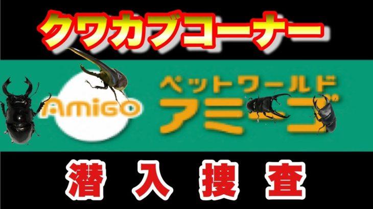 【ショップ】ペットワールドアミーゴ潜入捜査!!クワカブが豊富すぎた