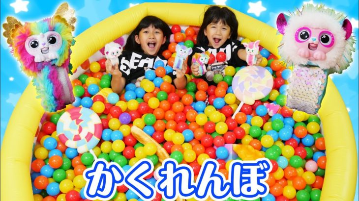 ボールプールでかくれんぼ☆チャッティーペッツの恩返し!himawari-CH