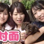 【どっきり】えっちゃんに、初めて子犬を会わせてみた♡【ぷんた】