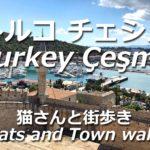[トルコ チェシメ] 猫さんと街歩きTurkey Çeşme Cats and Town walk