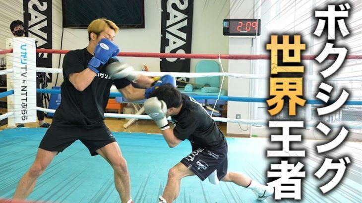 スマイル井上vs八重樫東!ボクシング王者とスパーリングとミット打ち!