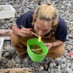 無人島で持ち物0で住居作り、飯と水調達「サバイバル野菜鍋」