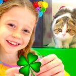 Nasta bermain dengan kucingnya dan belajar warna